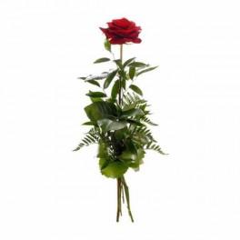 http://floristeriajerico.es/111-thickbox_leometr/rosa-arreglada-individual.jpg